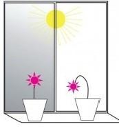 Солнцезащитные окна